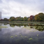 constitution-gardens-autumn